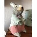 Zajac sisal